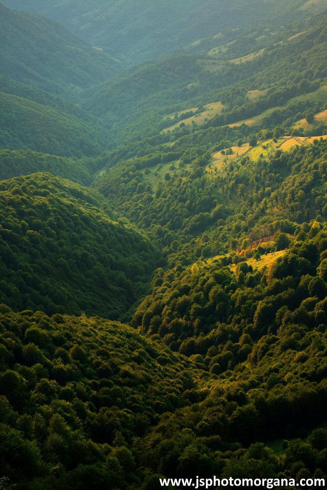 Brda Stare planine