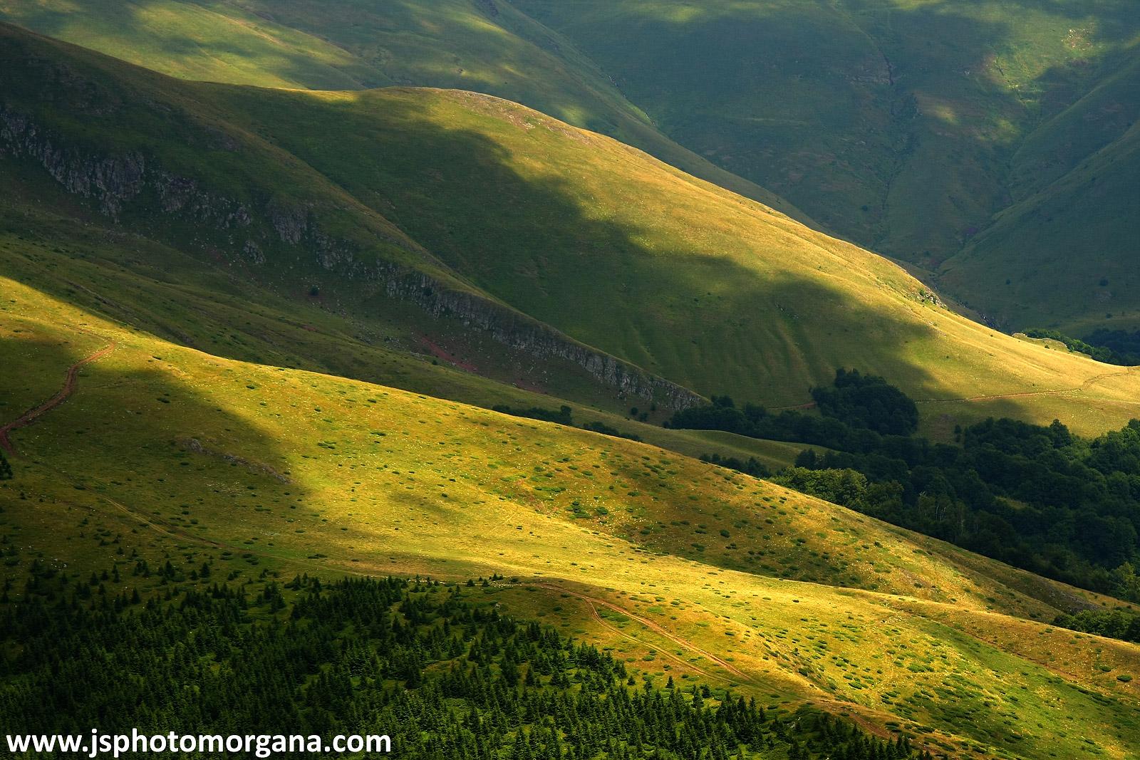 Livade Stare planine