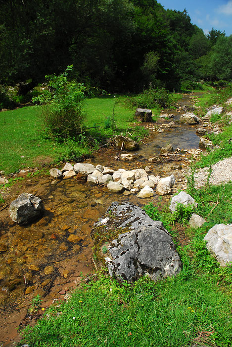 Planinski potok, Despotovac