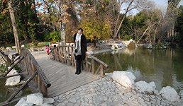 Gradski vrt