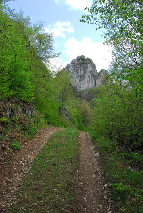 Gavranov kamik, brdo u selu Dragovita