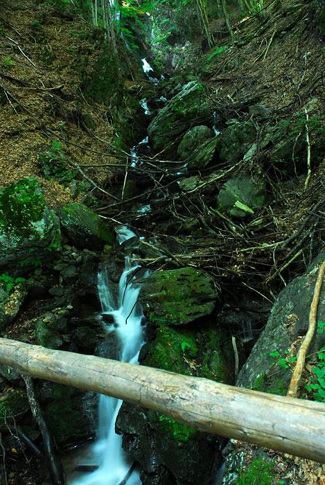 Portret najvećeg vodopada u Srbiji