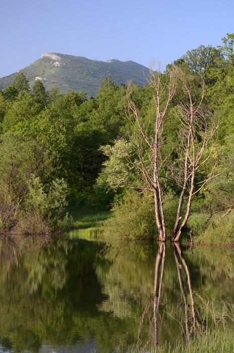 Refleksija jezera Vrmdže