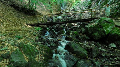 Jelovarnik, vodopad na Kopaoniku